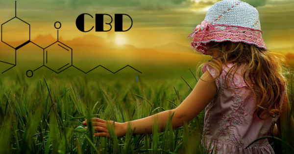 CBD Oil Pure (Cannabidiol) 20% (NOT RSO)