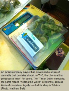 Israeli Company Removes THC for New Medicinal Marijuana