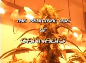 The Medicinal Use Of Cannabis