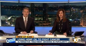 Hemp oil extract CBD being promoted as alternative health treatment for cancer, epilepsy