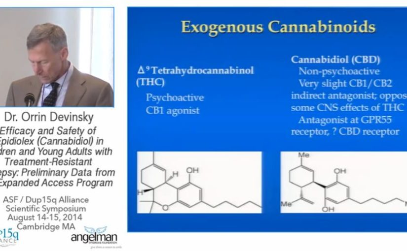 Cannabidiols: Potential Use in Epilepsy & Other Neurological Disorders