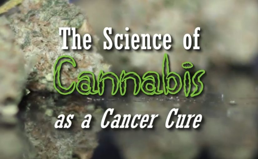 The Science of Cannabis as a Cancer Cure (Documentary)