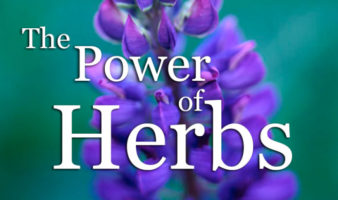 The Power Of Herbs - Full Herbal Medicine