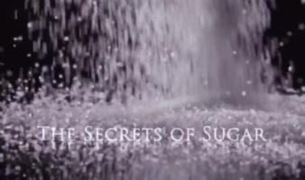 The Secrets of Sugar - The Fifth Estate