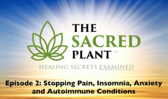 The Sacred Plant: Healing Secrets Examined - Episode 2