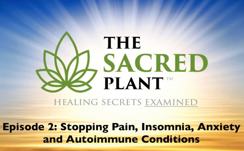The Sacred Plant: Healing Secrets Examined – Episode 2
