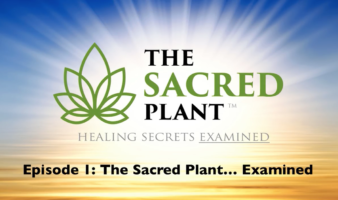 The Sacred Plant: Healing Secrets Examined - Episode 1